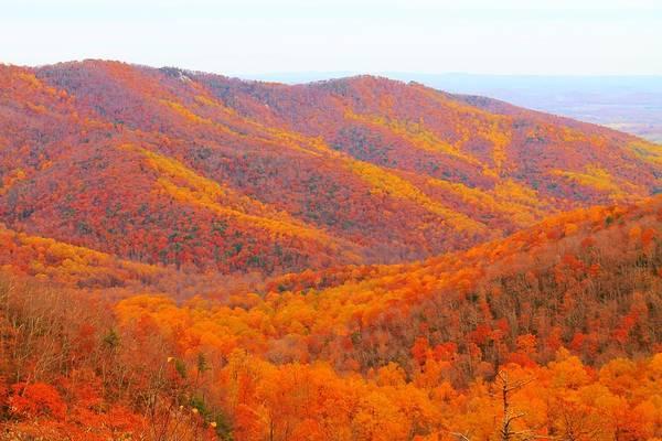 Photograph - Multicolored Mountaintop by Candice Trimble