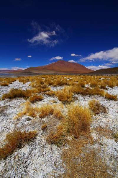 Bolivia Photograph - Multicoloured Desert by FireFlux Studios