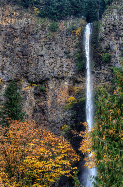Photograph - Multnomah Falls 2 by David Hart