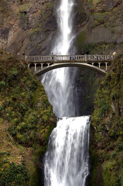 Photograph - Multnomah Falls by Alexander Fedin