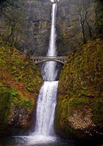 Photograph - Multnomah Falls  by Ginger Wakem