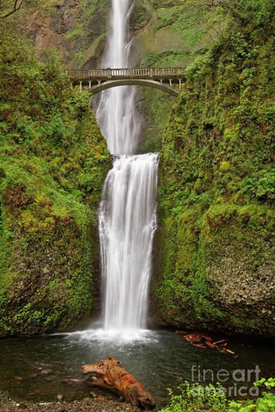 Photograph - Multnomah Falls II by Stuart Gordon