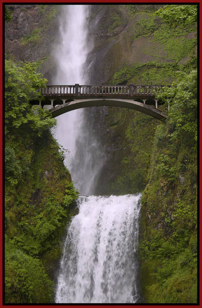 Photograph - Multnomah Falls Oregon by Gary Grayson