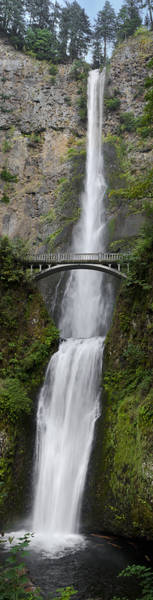 Photograph - Multnomah Falls Vertical Panorama II by Loree Johnson
