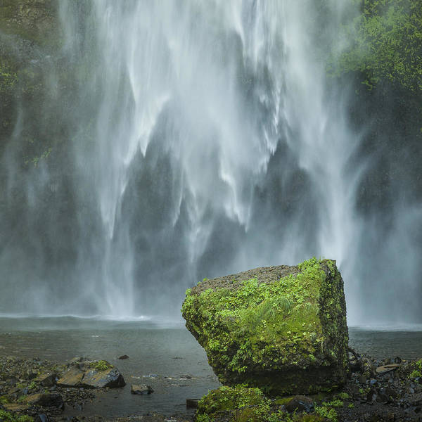 Photograph - Multnomah Rock by Andy Bitterer