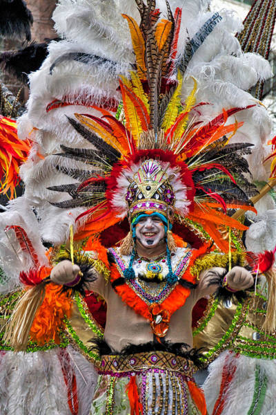 Photograph - Mummer Wow by Alice Gipson