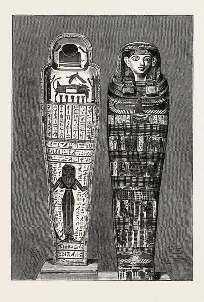 Mummy Drawing - Mummy Case.  Egypt by Litz Collection