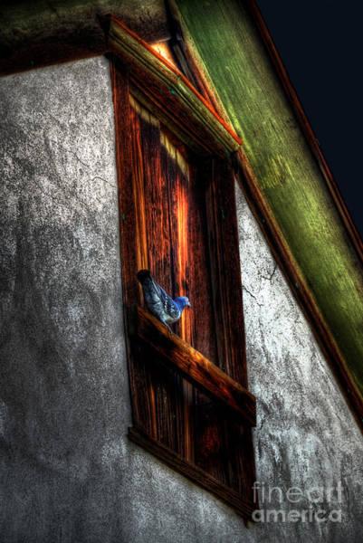 Photograph - Murmuring Sweet Nothings by Lois Bryan