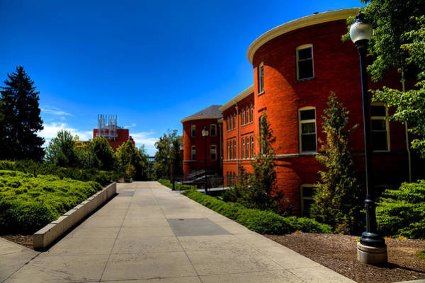 Photograph - Murrow Hall - Washington State University by David Patterson