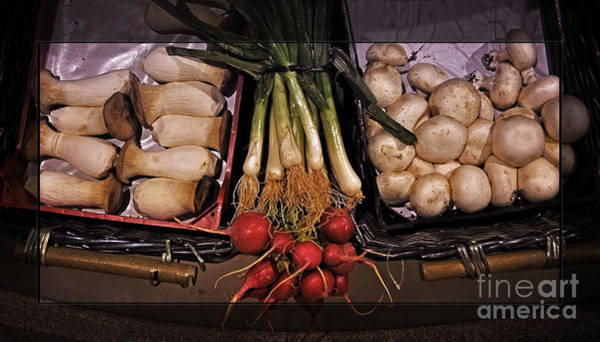 Scallion Photograph - Mushrooms And Radishes Framed by Mary Machare