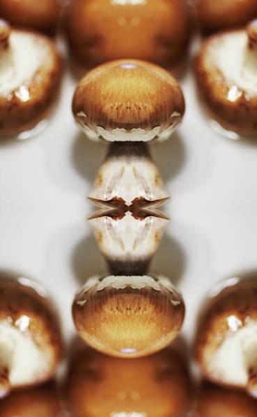 Photograph - Mushrroms by Silvia Otte