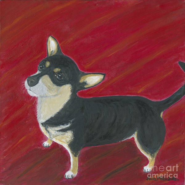 Painting - Musiu The Chihuahua  by Ania M Milo