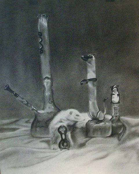Ferrets Drawing - Must Blend In by Raven Hernandez