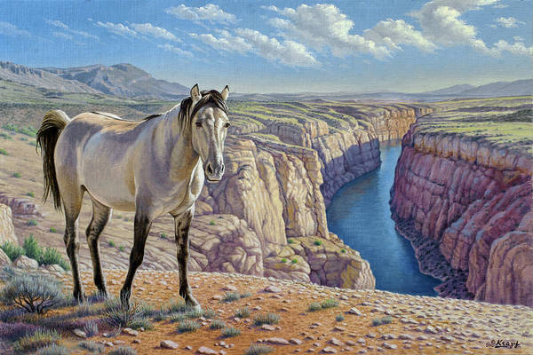 Wall Art - Painting - Mustang At Bighorn Canyon by Paul Krapf