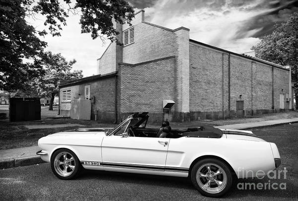 Photograph - Mustang Gt 350 At Sandy Hook by John Rizzuto