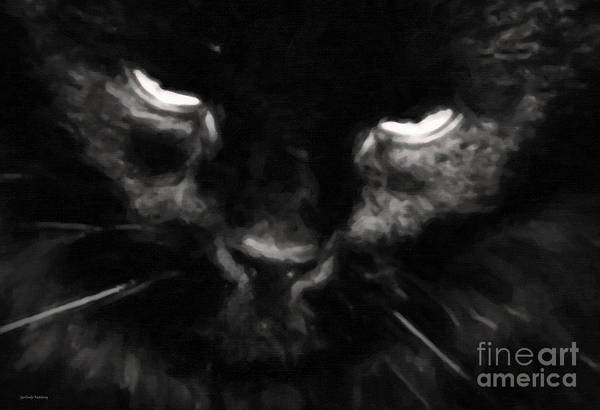 Photograph - My Cat by Gerlinde Keating - Galleria GK Keating Associates Inc