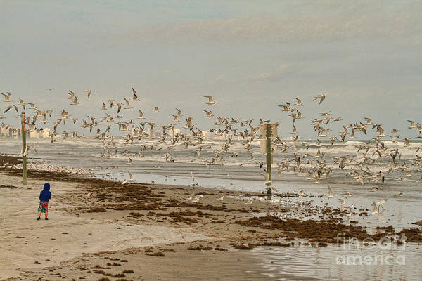 Photograph - My Day At The Beach by Deborah Benoit