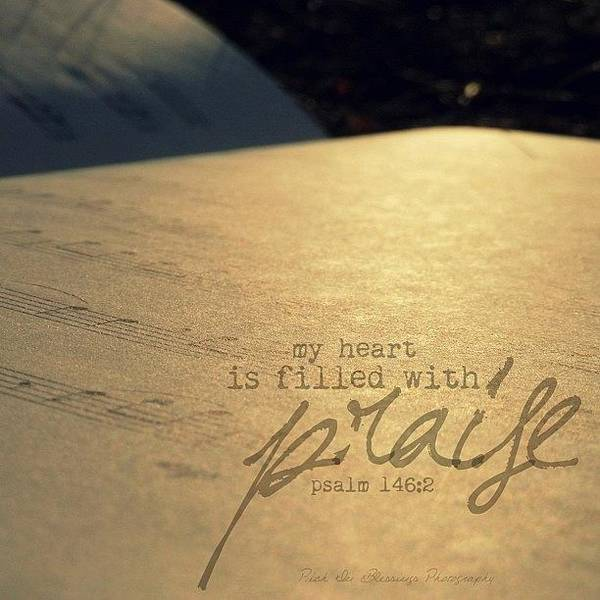 Wall Art - Photograph - My Heart Is Filled With Praise. || by Traci Beeson