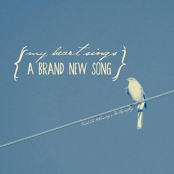 Wall Art - Photograph - My Heart Sings A Brand New Song || Shot by Traci Beeson