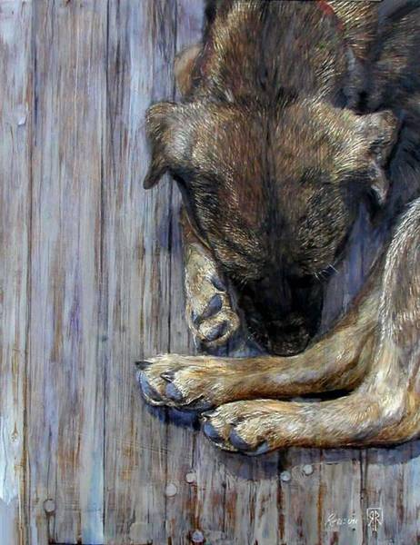 Curl Up Painting - My Hound From The Pound by Rick Reason