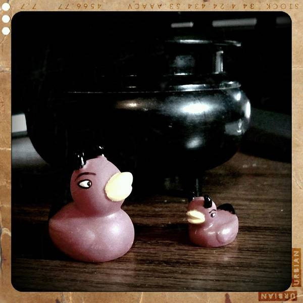 Rubber Ducky Photograph - My Little Devils by Heather L Wright
