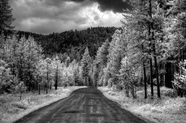 Photograph - My Road by Lee Santa