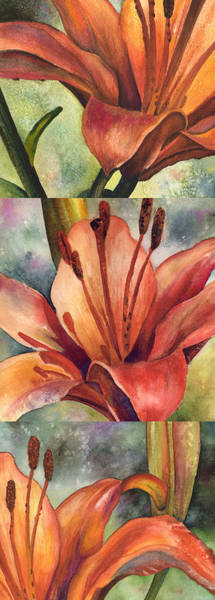 Painting - My Three Lilies by Anne Gifford