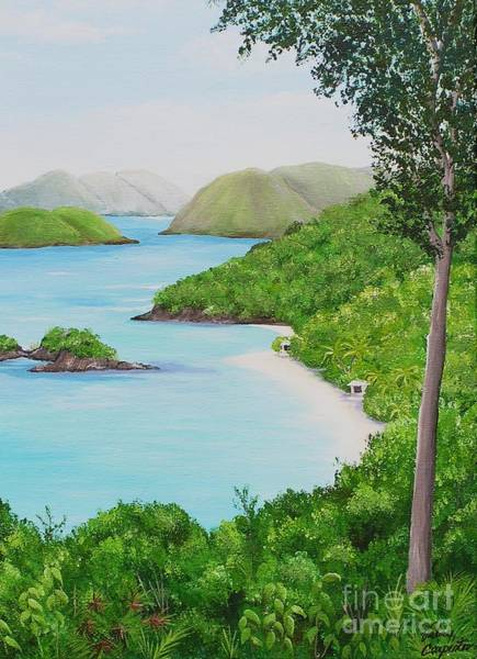 Us Virgin Islands Painting - My Trunk Bay by Valerie Carpenter