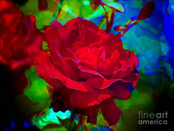 Photograph - My Wild Irish Rose by John  Kolenberg
