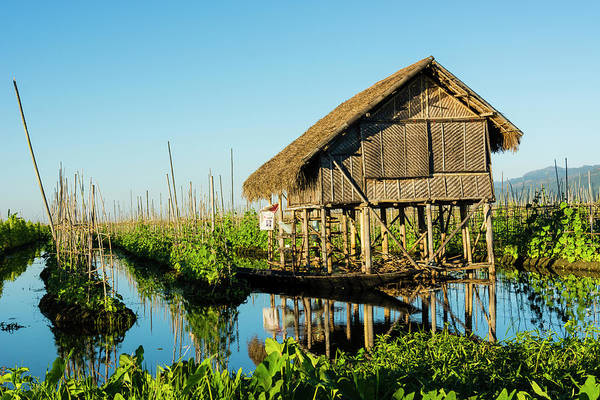 Burma Photograph - Myanmar Shan State Inle Lake Floating by Inger Hogstrom