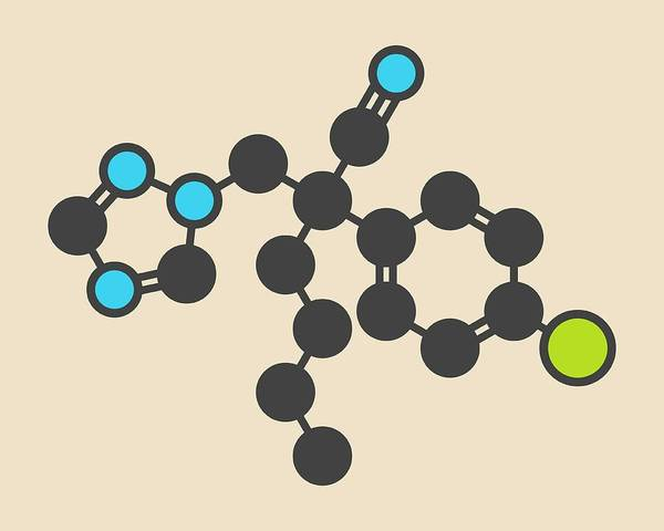 Rust Fungus Photograph - Myclobutanil Antifungal Molecule by Molekuul/science Photo Library