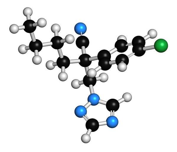 Rust Fungus Photograph - Myclobutanil Molecule by Molekuul/science Photo Library