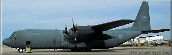 Photograph - Lockheed C-130 Hercules by Danielle  Parent