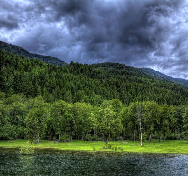Photograph - Myrtle Creek 1 by Lee Santa