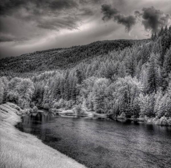 Photograph - Myrtle Creek 2 by Lee Santa