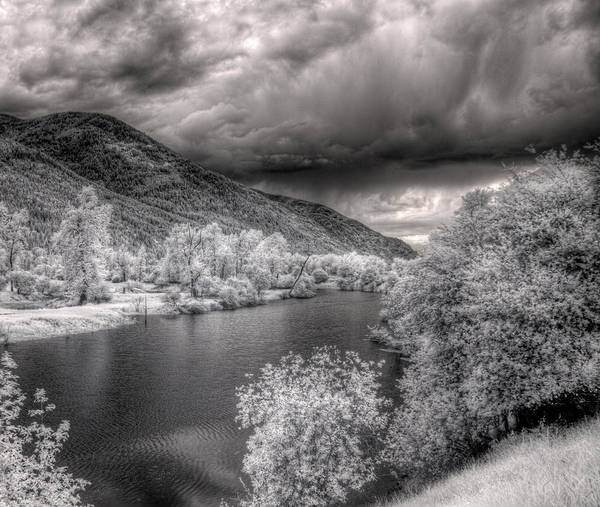 Photograph - Myrtle Creek 4 by Lee Santa