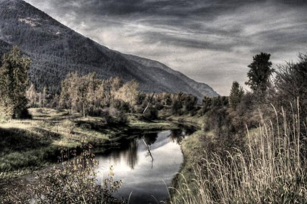 Photograph - Myrtle Creek 5 by Lee Santa