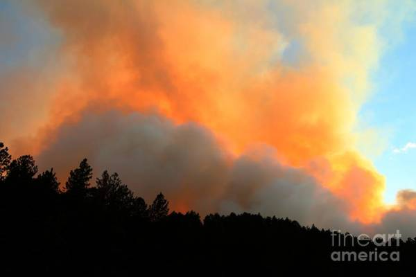 Photograph - Myrtle Fire Near Rifle Pit Road by Bill Gabbert