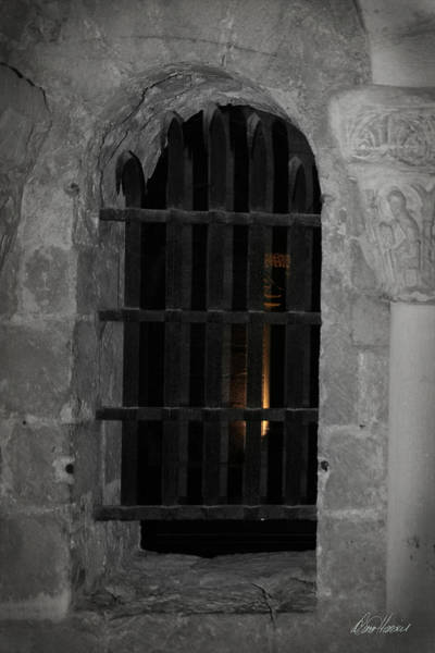 Photograph - Mysterious Face In Cell by Diana Haronis