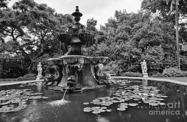 Water Lillies Photograph - Mystery Fountain - Huntington Library And Botanical Gardens. by Jamie Pham