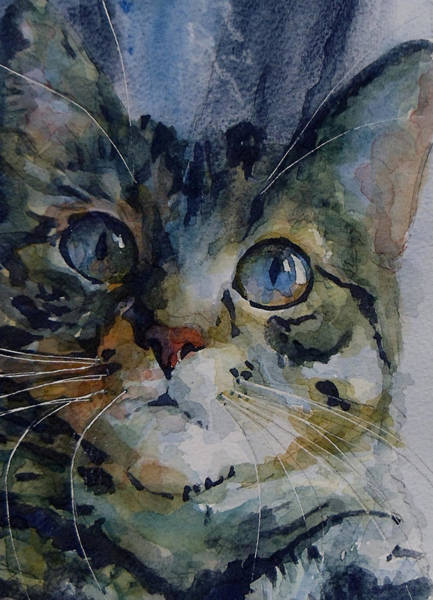 Kitten Wall Art - Painting - Mystery Tabby by Paul Lovering