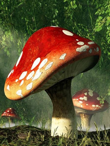 Mystic Digital Art - Mystic Mushroom by Daniel Eskridge