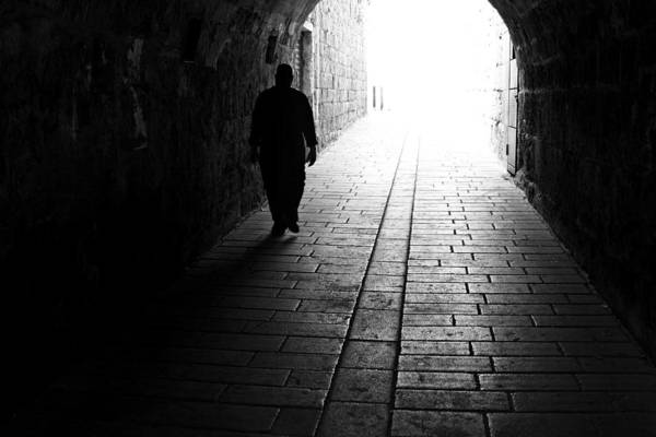 Wall Art - Photograph - Mystic Path by Metin Cherasi