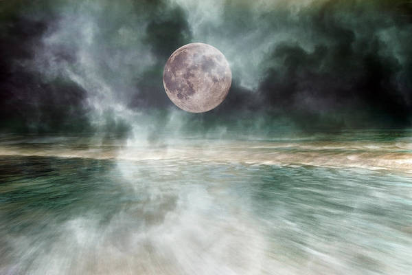 Wall Art - Photograph - Mystical Beach Moon by Betsy Knapp