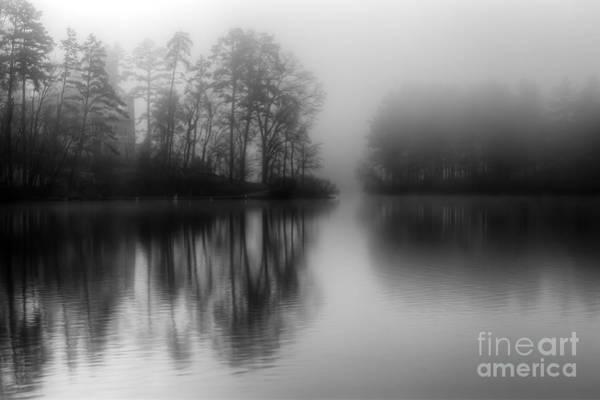 Photograph - Mystical Morning by Deborah Scannell
