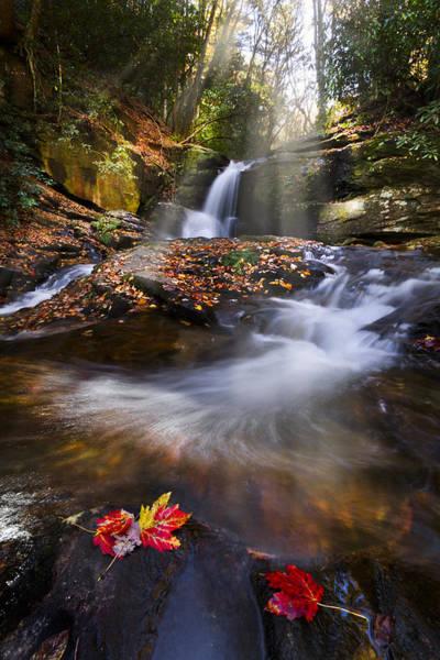 North Carolina Waterfalls Photograph - Mystical Pool by Debra and Dave Vanderlaan