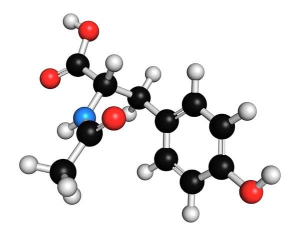 Neurotransmitter Wall Art - Photograph - N-acetyl-tyrosine Molecule by Molekuul