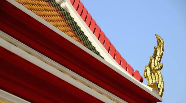 Naga Roof Art Print