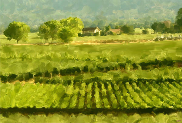Napa Painting - Napa Detail by Paul Tagliamonte