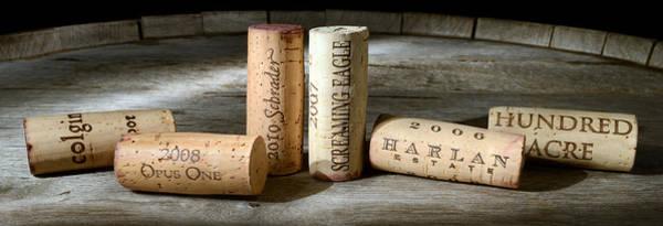 Vintage Wine Photograph - Napa Valley Favorites by Jon Neidert